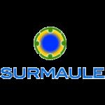 29-Sur-Maule